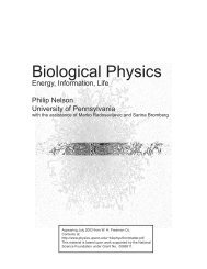 Biological Physics - Department of Physics and Astronomy ...