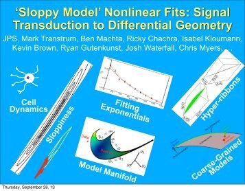 'Sloppy Model' Nonlinear Fits: Signal Transduction to Differential ...