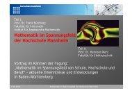 Mathematik im Spannungsfeld der Hochschule Mannheim