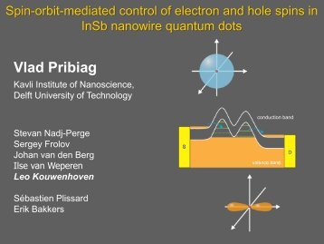 Spin-orbit-mediated control of electron and hole spins in InSb ...