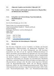 1 Tabellarischer Lebenslauf Priv. - Institut für Physik ...