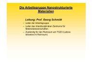Fachgruppe Nanostrukturierte Materialien