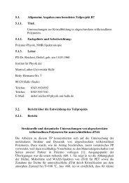5.1. Allgemeine Angaben zum beendeten ... - Institut für Physik