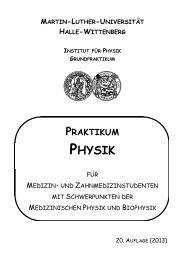 Hinweise zum Ablauf des Praktikums - Institut für Physik - Martin ...