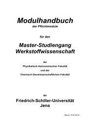 Modulhandbuch - Die Physikalisch-Astronomische Fakultät ...