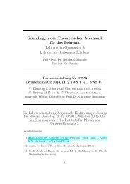 Grundlagen der Theoretischen Mechanik für das ... - Institut für Physik