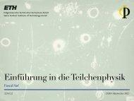 Einführung in die Teilchenphysik / Standard Modell