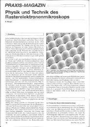 Physik und Technik des Rasterelektronenmikroskops. Praxis der ...