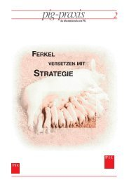 ferkel versetzen mit strategie - PIC Deutschland GmbH