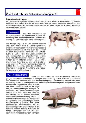 Zucht auf robuste Schweine ist möglich! - PIC Deutschland GmbH