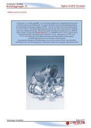 Spiro-SAFE-System Kataloggruppe 11 - Pichler
