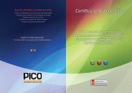 Syllabus Adobe Certified Associate CS5 - Pico