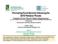 Promoting Food Security following the 2010 Pakistan Floods ...