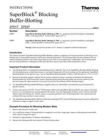 SuperBlock Blocking Buffer-Blotting - Pierce