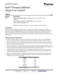 Halt™ Protease Inhibitor Single-Use Cocktail - Pierce