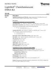 Lightshift Chemiluminescent Emsa Kit Pdf