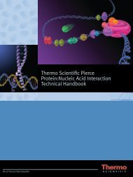 Thermo Scientific Pierce Protein:Nucleic Acid Interaction Technical ...