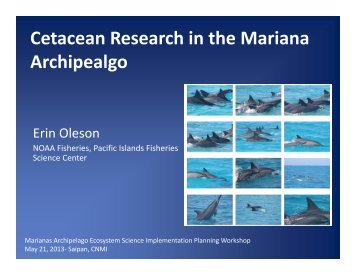 Cetacean Research in the Mariana Archipealgo - Pacific Islands ...
