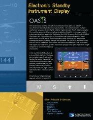 OAS S - Pilot und Flugzeug