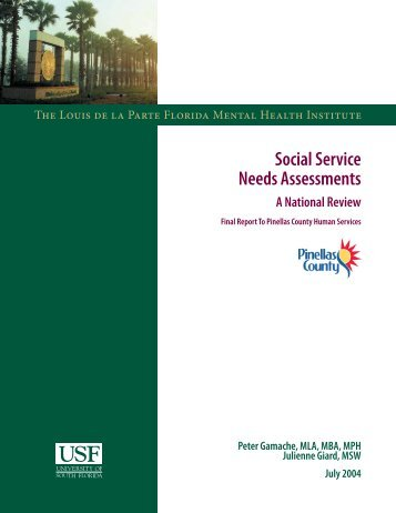 Social Service Needs Assessments - A National - Pinellas County