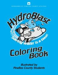 HydroBlast: Saving Water is a Blast - Pinellas County