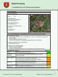 Umweltbericht - Stadt Pinneberg - Seite 5