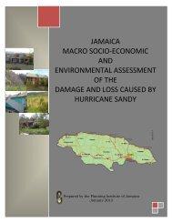 jamaica macro socio-economic and environmental assessment of ...