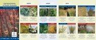 Declared Plants of South Australia Brochure (PDF 3.4 ... - SA.Gov.au
