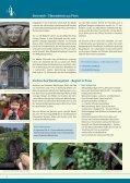 Willkommen in Pirna – Stadt zur Sächsischen Schweiz - Page 2