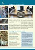 Willkommen in Pirna – Stadt zur Sächsischen Schweiz - Page 4