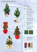 Weihnachtsideen die wachsen und schmecken - Seite 4