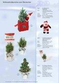 Weihnachtsideen die wachsen und schmecken - Seite 6