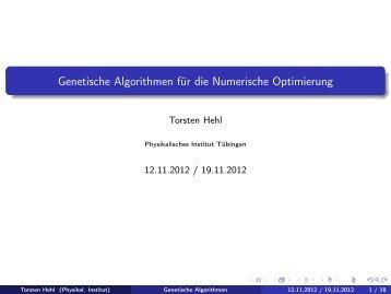 Genetische Algorithmen für die Numerische Optimierung