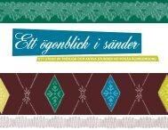 Ett ögonblick i sänder (pdf, 2 mb, nytt fönster) - Piteå kommun