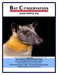 batconservationinternational 12-day southern africa wildlife safari