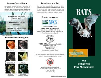 and integrated pest management - Bat Conservation International