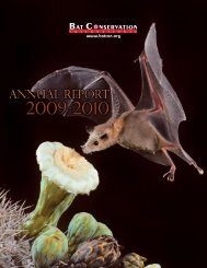 Download - Bat Conservation International