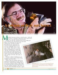 Merlin Tuttle - Bat Conservation International