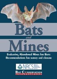 Bats & Mines Brochure - Bat Conservation International