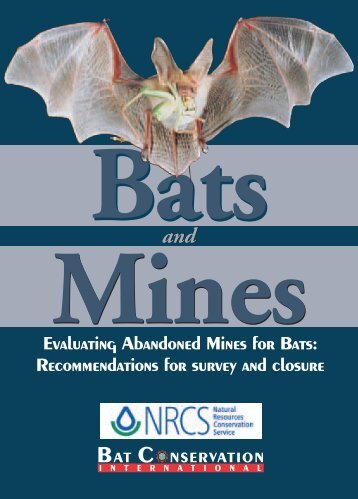 Bats & Mines Brochure - Bat Conservation International