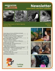 Newsletter - Bat Conservation International
