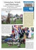 Gelungener Auftakt des Surf-Festivals - Der Reporter - Seite 3