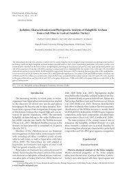 Isolation, Characterization and Phylogenetic Analysis of Halophilic ...