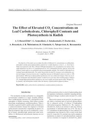 The Effect of Elevated CO Concentrations on Leaf Carbohydrate ...