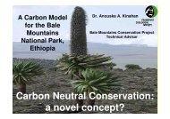 Ethiopie_CarbonModel Bale.pdf - Planet Action