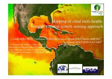 Mapping of coral reefs health: towards a spatial ... - Planet Action