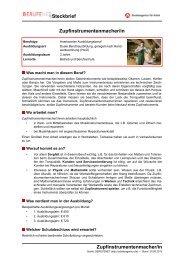 Zupfinstrumentenmacher/in Steckbrief ... - BERUFEnet