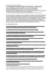 13 hipotezoj pri Esperanto (2012) - Plansprachen.ch