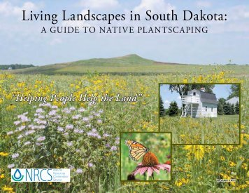 Living Landscapes in South Dakota - Plant Materials Program - US ...