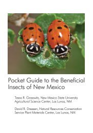 Pocket Guide to the Beneficial Insects of New Mexico